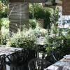 ¡Ya es primavera! Vámonos a comer de terrazas