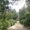 Parc de l´Oreneta, veranos al sol en la zona alta de Barcelona