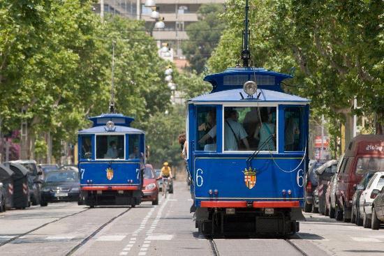 tranvías azules en avenida tibiado