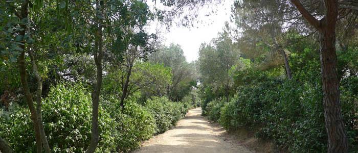 Parque de l´Oreneta en Sarrià Sant Gervasi